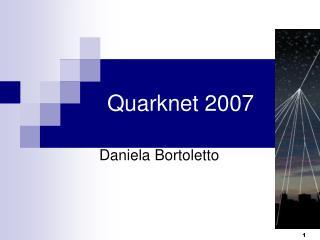 Quarknet 2007