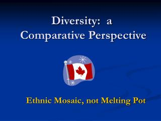 Diversity:  a  Comparative Perspective