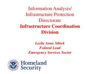 Information Analysis / Infrastructure Protection (IAIP) Functional Statement