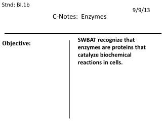 C-Notes:  Enzymes
