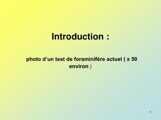 Introduction : photo d'un test de foraminifère actuel ( x 50 environ  )