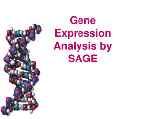 Gene Expression Analysis by SAGE
