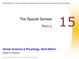 The Special Senses Part A