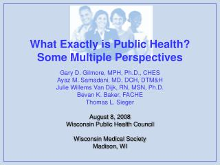 What Exactly is Public Health?   Some Multiple Perspectives