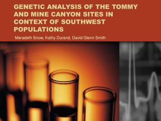 GENETIC ANALYSIS OF THE TOMMY AND MINE CANYON SITES IN CONTEXT OF SOUTHWEST POPULATIONS