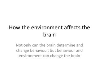 How the environment affects the brain