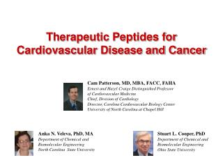 Therapeutic Peptides for Cardiovascular Disease and Cancer