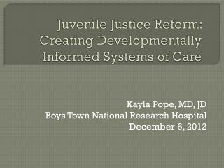 Juvenile Justice Reform: Creating Developmentally Informed Systems of Care