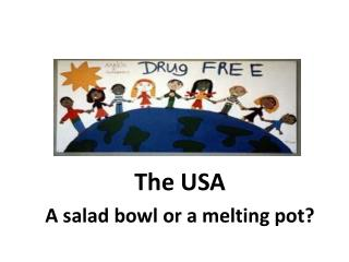 The USA A salad bowl or a melting pot?