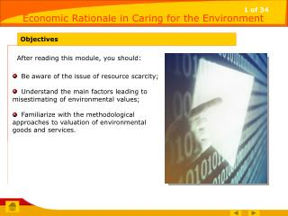 Economic Rationale in Caring for the Environment