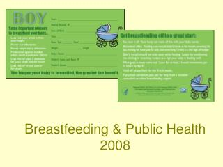 Breastfeeding & Public Health  2008