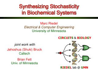 Synthesizing Stochasticity in Biochemical Systems