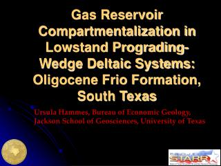 Ursula Hammes, Bureau of Economic Geology,  Jackson School of Geosciences, University of Texas
