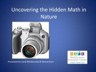 Uncovering the Hidden Math in Nature