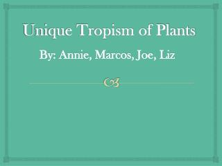 Unique Tropism of Plants