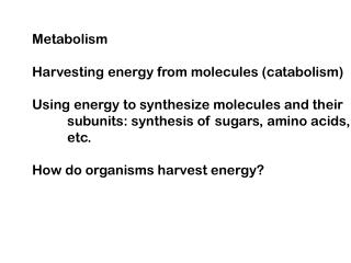 Metabolism Harvesting energy from molecules (catabolism)