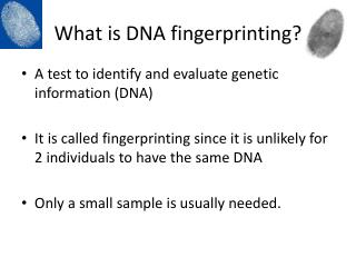 What is DNA fingerprinting?