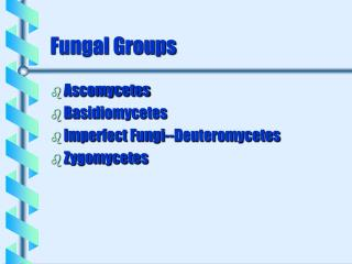 Fungal Groups