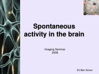 Spontaneous activity in the brain