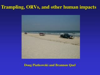 Trampling, ORVs, and other human impacts