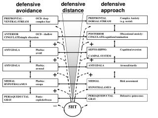 defensive distance