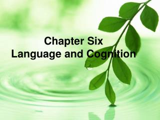 Chapter Six Language and Cognition