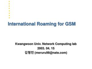 International Roaming for GSM