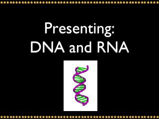 Presenting: DNA and RNA