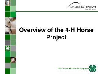Overview of the 4-H Horse Project