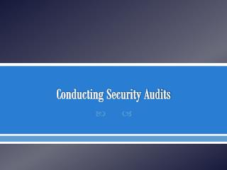 Conducting Security Audits