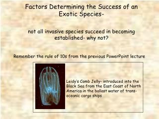 Factors Determining the Success of an Exotic Species-   not all invasive species succeed in becoming established- why no