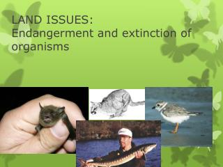 LAND ISSUES:  Endangerment and extinction of organisms
