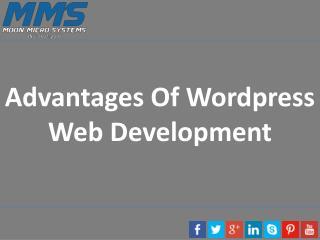 Advantages Of Wordpress Web Development