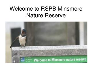 Welcome to RSPB Minsmere Nature Reserve