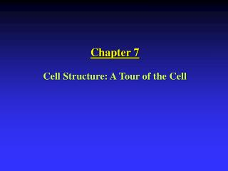 Chapter 7 Cell Structure: A Tour of the Cell
