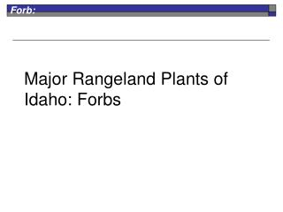 Major Rangeland Plants of Idaho: Forbs