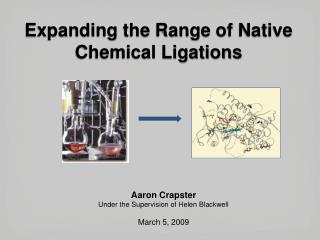 Expanding the Range  of Native  Chemical Ligations