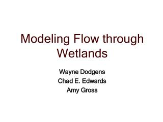 Modeling Flow through Wetlands