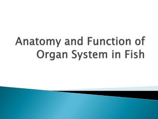 Anatomy and Function of Organ System in Fish