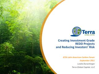Creating Investment Grade REDD Projects  and Reducing Investors' Risk