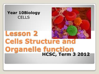 Lesson  2 Cells  Structure and Organelle function