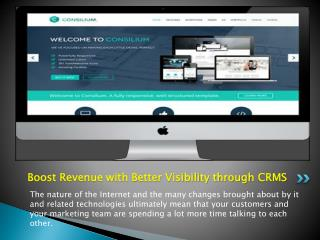Boost Revenue with Better Visibility through CRMS