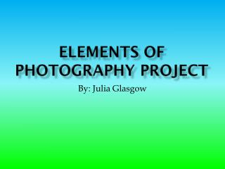 Elements of Photography Project