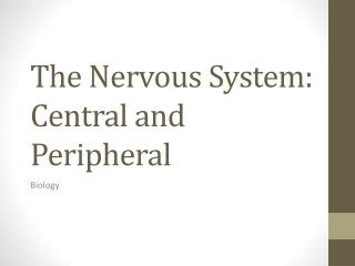 The Nervous System: Central and Peripheral
