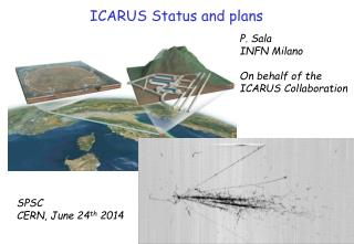 ICARUS Status and plans