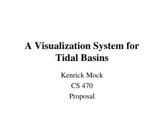A Visualization System for Tidal Basins