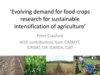 'Evolving demand for food crops research for sustainable intensification of agriculture'