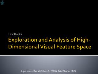 Exploration and Analysis of High-Dimensional Visual Feature Space