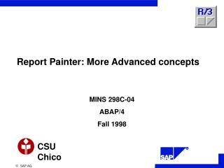 Report Painter: More Advanced concepts