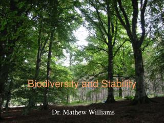 Biodiversity and Stability